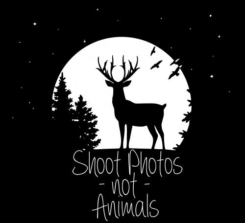 Shoot Photos not Animals